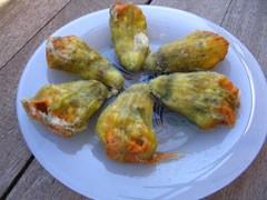 Zucchini blossoms stuffed with cracked wheat